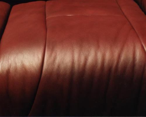 repaired leather couch